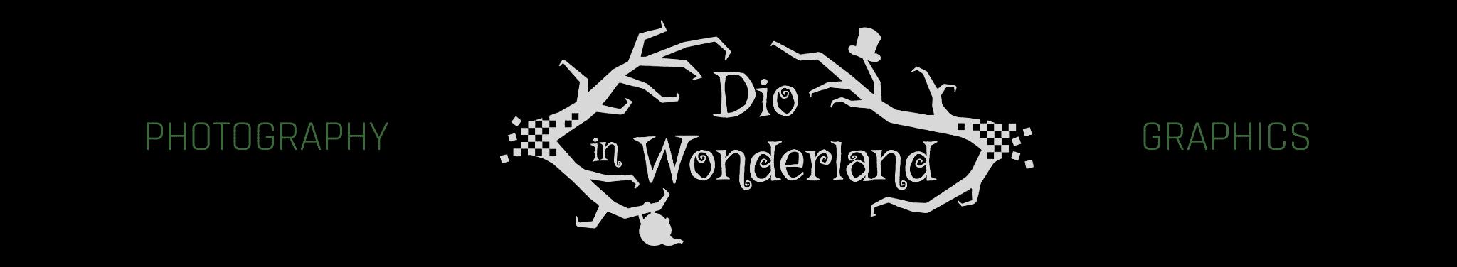 Dio in Wonderland